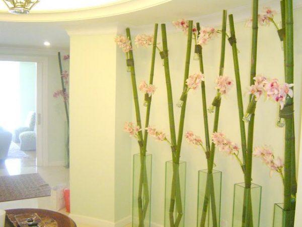 Cañas de bambu decoración